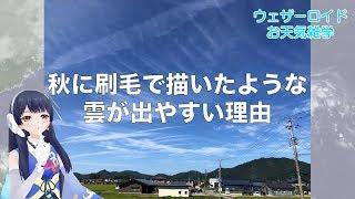 ウェザーロイドお天気雑学秋に刷毛で描いたような雲が出やすい理由とは