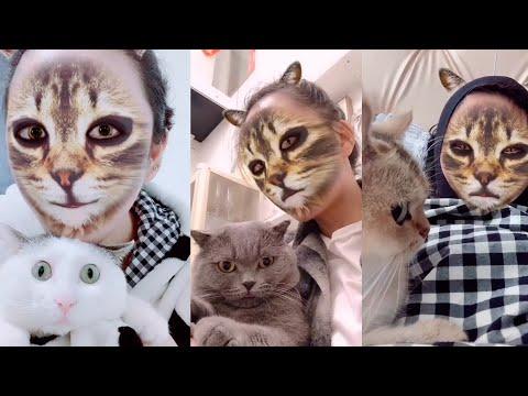 Arme katten als gezicht eigenaar veranderd in die van een kat