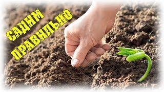 Деревенские будни - правильно садим огород на новом месте. Погода шепчет... / Семья в деревне