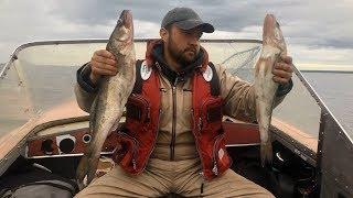 Рыбалка с берега на ладожском озере