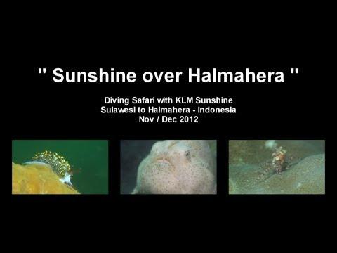 Sunshine over Halmahera, Halmahera,Indonesien