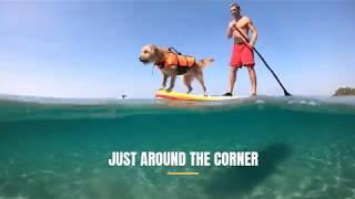 Long Lake Condos Summer FUN!