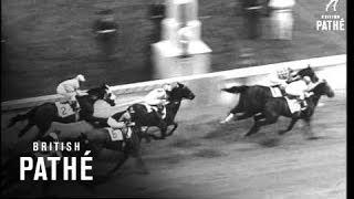 Kentucky Derby (1964)