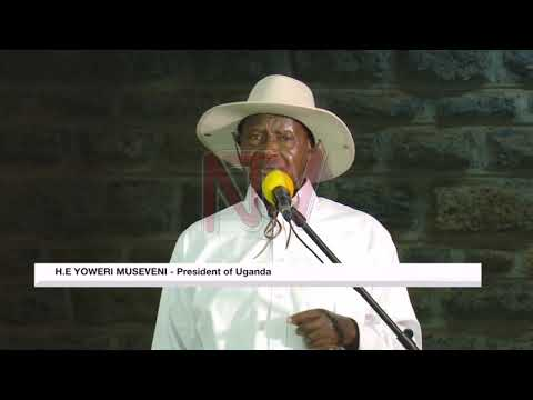 I don't care about people offending me - Museveni
