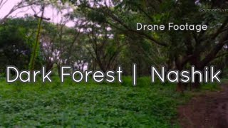 Dark Forest | FPV | DJI Mini 2 | Nashik | Sula Vineyards