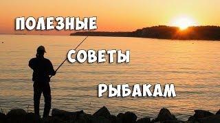 Полезные советы бывалых рыбаков начинающим - Видео онлайн