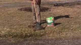 How To Rake Your Spring Lawn