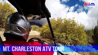 Mt Charleston Tour