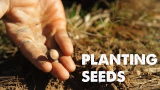 PLANTING SEEDS: A Song of Life | Empty Hands Music | nimo feat. daniel nahmod