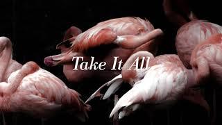 Iceage - Take It All | Kholo.pk