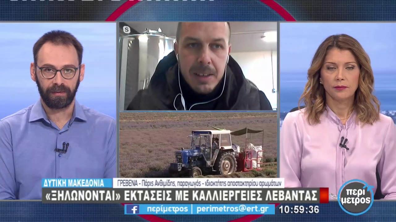 «Ξηλώνονται» εκτάσεις με καλλιέργειες λεβάντας | 21/1/2021 | ΕΡΤ