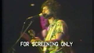 Fleetwood Mac ~ World Turning ~ Japan Live 1977