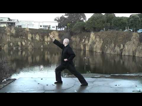 New Qigong Channel with free comprehensive online training ...
