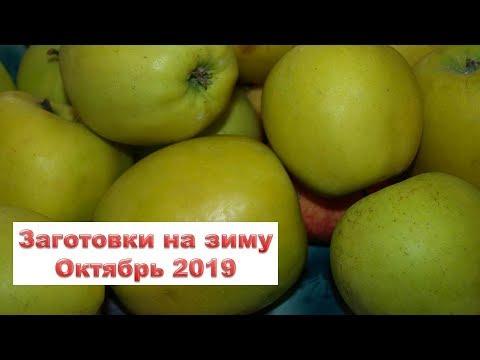 Лучшие дни октября 2019 года для квашения, консервации, сбора Раиса Горяченко Гороскоп овощи рецепты