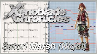 "New Transcription: ""Satorl Marsh (Night)"" from Xenoblade Chronicles (2010)"