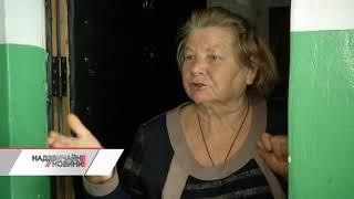 Розстріл пенсіонерки на Київщині: всі подробиці