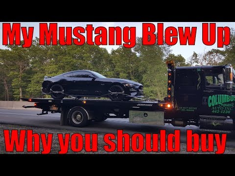 My 2018 Mustang GT Blew Up... So Why Do I Recommend One?