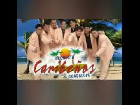 Tengo k olvidarte amor caribeños de guadalupe canta nino bravo macedo
