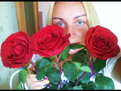 КАК ПРОДЛИТЬ ЖИЗНЬ БУКЕТУ. Розы