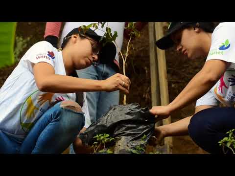 Teleperformance siembra 30 árboles en Medellín!