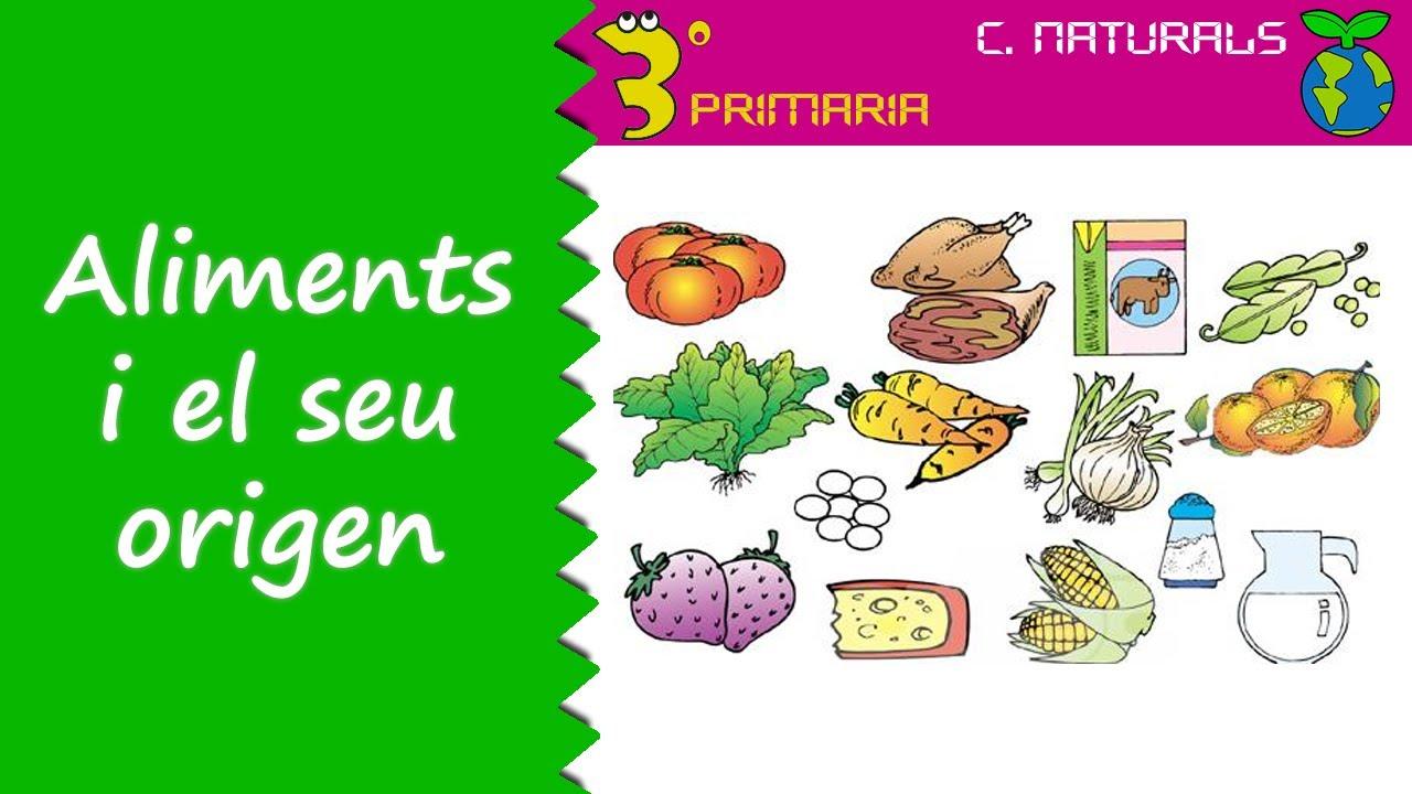 Ciències de la Naturalesa. 3r Primària. Tema 4. Els aliments i el seu origen