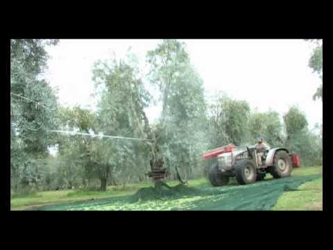 Agrioil Pinza modello ALTA PRESSIONE raccolta olive
