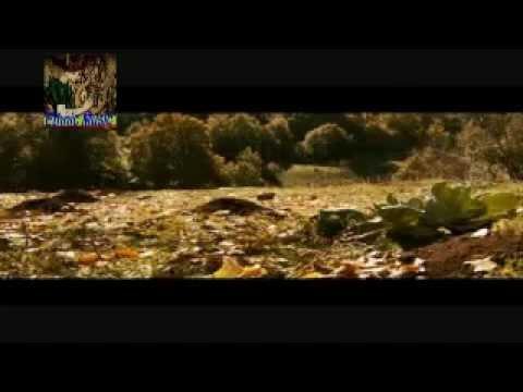 Khaçadur Avedisyan - Değerkutyun