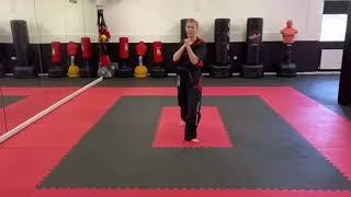Back leg front kick