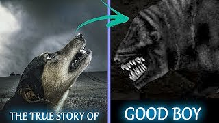 The true story of GOOD BOY