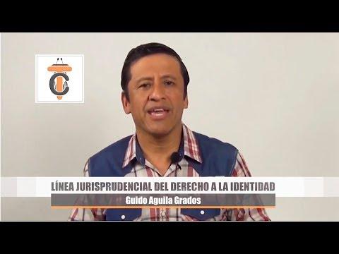 Línea Jurisprudencial Constitucional del Derecho a la Identidad - Tribuna Constitucional 48