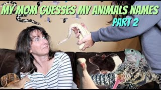 MY MOM GUESSES MY ANIMALS NAMES (AGAIN; Harder) Part 2