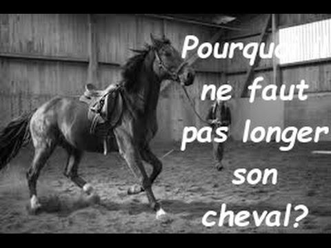 Le stimulant de cheval les rappels