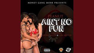 Ain't No Fun (feat. Young Meezy & Hbk Skipper)