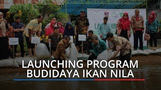 Dompet Dhuafa Singgalang Launching Program Budidaya Ikan Nila, Targetkan 10 Penerima