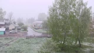Московский снег на западе Беларуси 10 мая 2017 г.