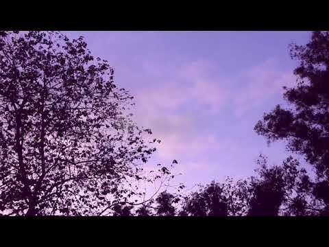 Adekunle gold ire official dance video