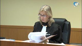В Новгородском районном суде началось рассмотрение двух гражданских исков, в которых фигурирует имя Аллы Хорошевской