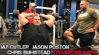 Джей Катлер, Джейсон Постон и Крис Бамстед - Тренировка рук (01.03.2018)