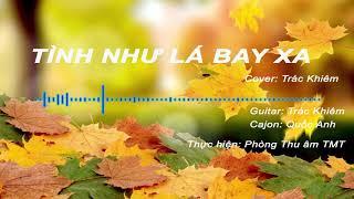 Tình Như Lá Bay Xa - Cover by Trác Khiêm