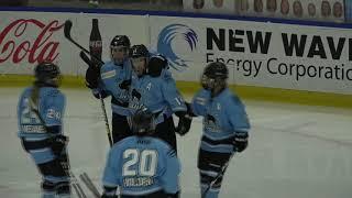 NWHL Highlights: Metropolitan at Buffalo 01.12.19
