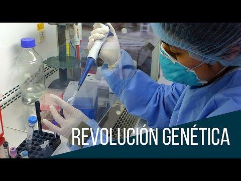 Ingeniería genética - gran potencial, grandes peligros