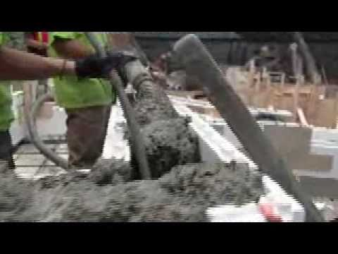 Fox Blocks at the Zoo: Concrete