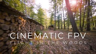 Cinematic FPV - Flight in the woods