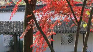 preview picture of video 'Suzhou gardens'