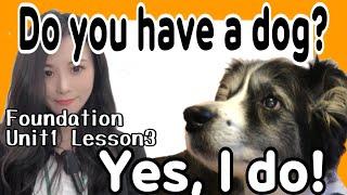 〜を持っていますか?Foundation/Unit1/Lesson3[#101]