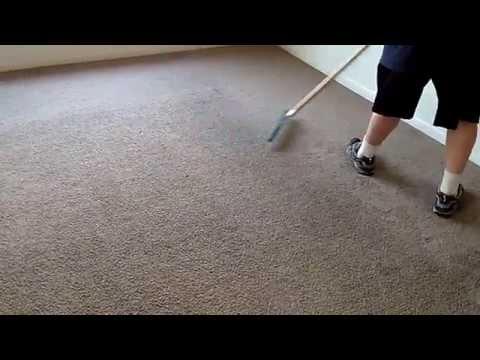 Grandi Groom Carpet Rake In Use...So Easy!