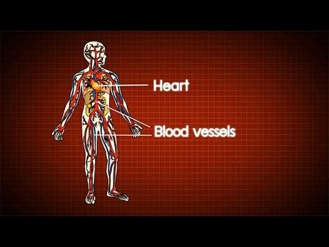 Detraleks จากเส้นเลือดขอดที่ขา