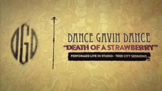 Dance Gavin Dance - Death Of A Strawberry (Tree City Sessions)