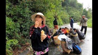 Lên núi Hái Măng cùng gia đình Cô người dân tộc K'HO - Hương vị đồng quê - Bến Tre - Miền Tây