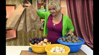 Как сохранить урожай овощей вквартире
